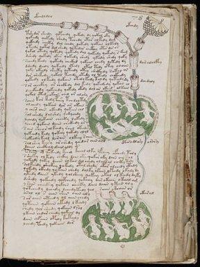 manuscrit Voynich_02